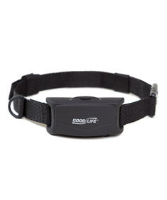 Review Anti-bark Dog Collar